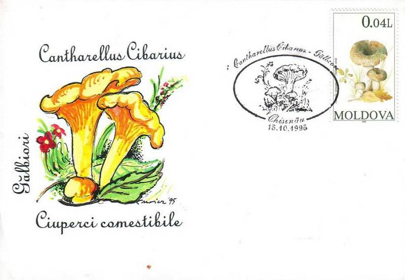 № CS1995/F3 - Edible Mushrooms (FAKE CANCELLATIONS)