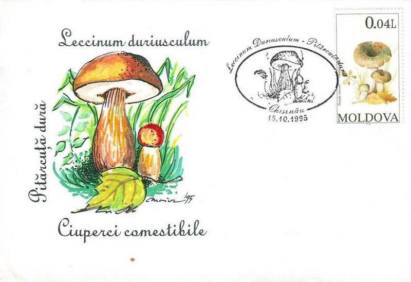 № CS1995/F5 - Edible Mushrooms (FAKE CANCELLATIONS)