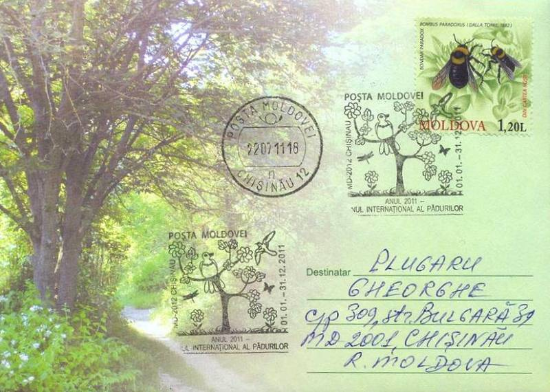 № CS2011/1 - International Year of Forests