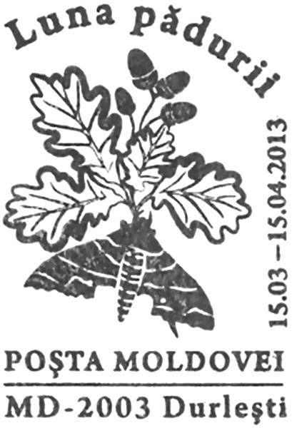 Special Commemorative Cancellation | Postmark: Durleşti MD-2003 15/03/2013