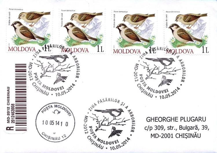 № CS2014/8 - Day of Birds and Trees