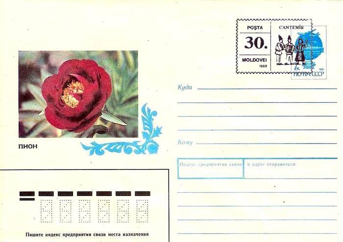 Envelope: Peony «Dandy Dan» (Address Side)