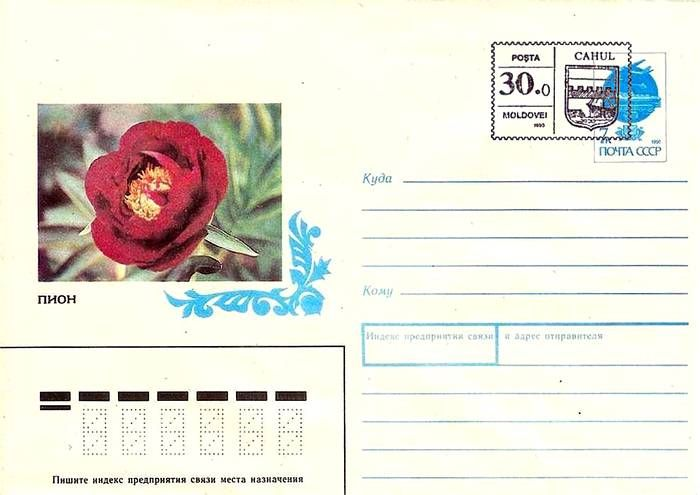 Envelope: Peony «Dandy Dan» (Address Side)