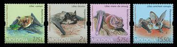№ - 1011-1014 - From The Red Book of the Republic of Moldova: Bats