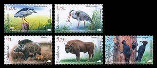 Fauna from the «Pădurea Domnească» (Princely Forest) Nature Reserve