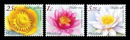 № - 1098-1100 - Flora - Water Lilies