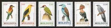 № - 14-19 - Birds (I)