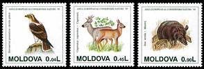 European Nature Conservation Year