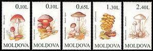 № - 190-194 - Mushrooms (II)