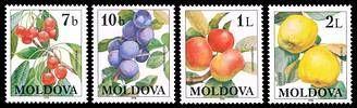 Fruits 1998