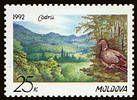 Codrii Nature Reserve