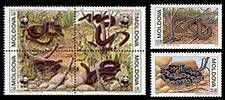 Endangered Snake Species - World Wide Fund for Nature (WWF) 1993