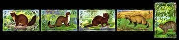 № - 559-563 - From The Red Book of the Republic of Moldova: Fauna - Mammals
