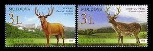 Deer (Joint Issue Between Moldova and Kazakhstan)