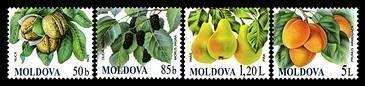 № - 669-672 - Fruits