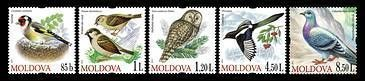 № - 698-702 - Birds (III)