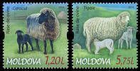 № - 877-878 - Breeds of Sheep
