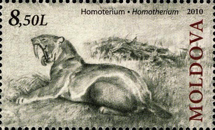 Sabre-Toothed Cat (Homotherium)