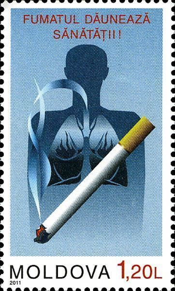 Cigarette and Human Lungs