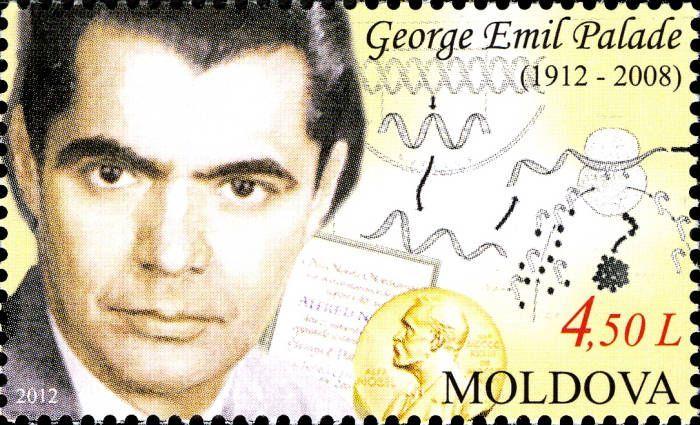 George Emil Palade (1912-2008). Romanian Biologist