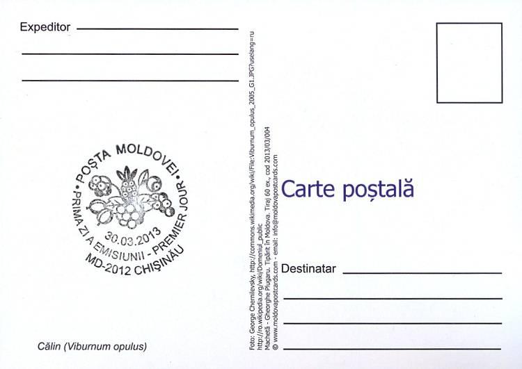 Viburnum (Address Side)