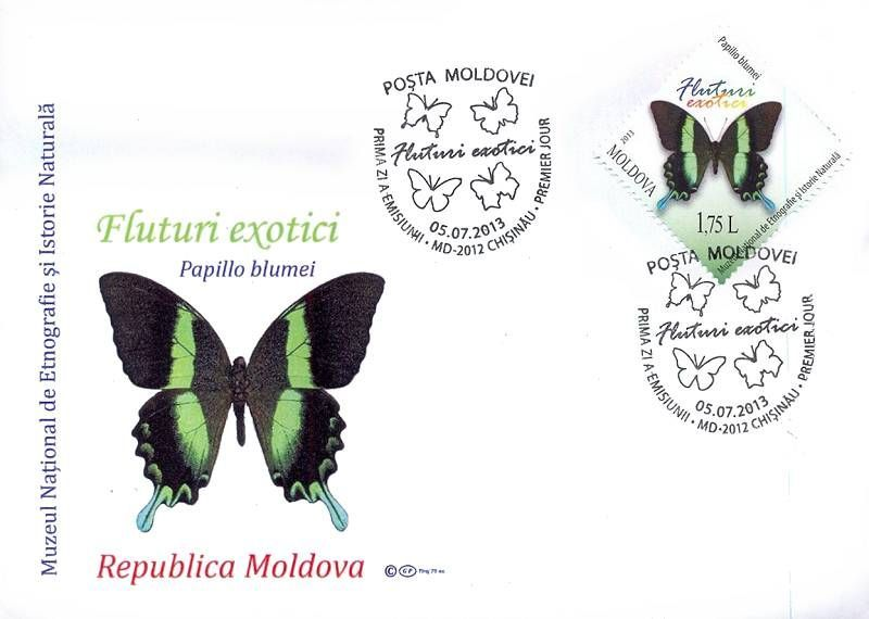 Cachet: Papilio Blumei (Peacock or Green Swallotail Butterfly)