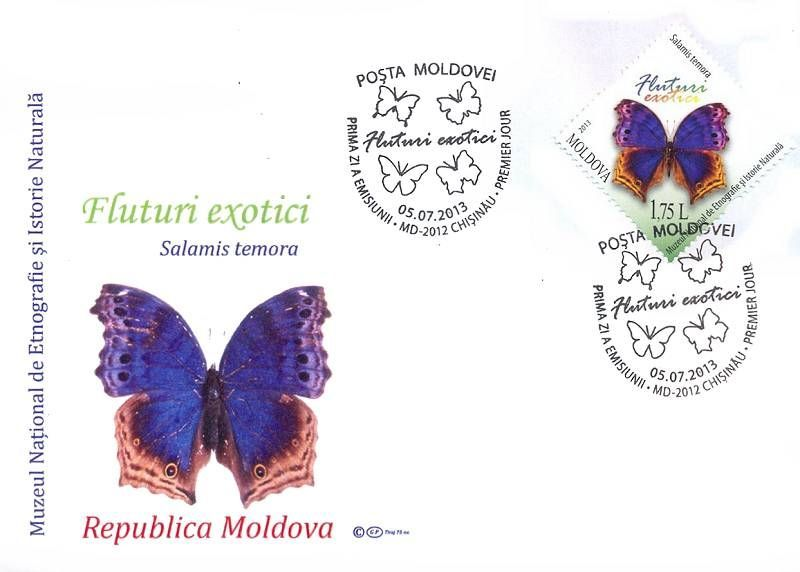 Cachet: Salamis / Protogoniomorpha Temora (Blue Mother-of-Peal Butterfly)