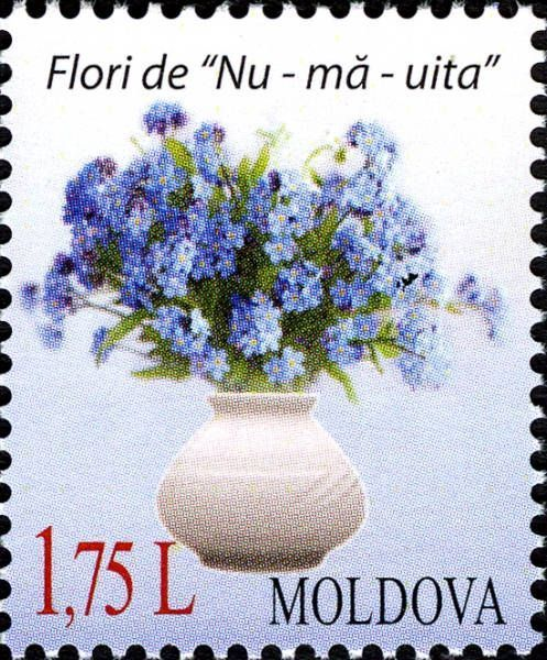 Flowers «Forget-Me-Not». Label May be Personalised