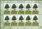 № 1034 Kb - Trees 2018