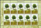 № 1035 Kb - Trees 2018