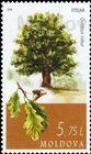 № 1036 (5.75 Lei) European Oak (Quercus robur)