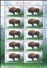 № 1040 Kb - Fauna from the «Pădurea Domnească» (Princely Forest) Nature Reserve 2018