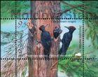 № Block 79 (1041) - Fauna from the «Pădurea Domnească» (Princely Forest) Nature Reserve 2018
