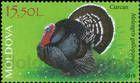 № 1060 (15.50 Lei) Domestic Turkey (Meleagris gallopavo)
