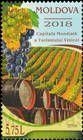 Grapes, Vineyard and Wine Barrels