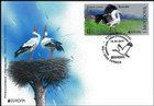 № 1096 FDC1 - Pair of White Storks, Nesting