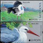 № 1096 ZfV - EUROPA 2019: National Birds 2019