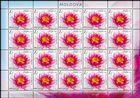 № 1099 Kb - Flora - Water Lilies 2019
