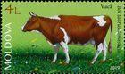 № 1107 (4.00 Lei) Cow (Bos taurus)