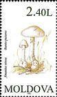 № 194 (2.40 Lei) Common Stinkhorn