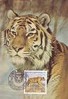№ 397 MC5 - Tiger