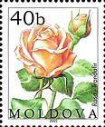 № 430 (0.40 Lei) Rose
