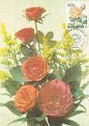 № 430 MC1 - Chişinău Botanical Gardens 2002
