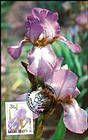 № 433 MC4 - Chişinău Botanical Gardens 2002