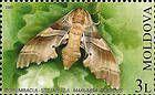№ 461 (3.00 Lei) Oak Hawk (Moth)