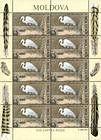 № 482 Kb - From The Red Book of the Republic of Moldova: Birds 2003
