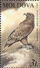№ 483 (3.00 Lei) Steppe Eagle