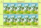 № 502 Kb - From The Red Book of the Republic of Moldova: Shrubs 2004