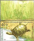 № 528Zf - From The Red Book of the Republic of Moldova: Fauna - Reptiles and Amphibians 2005
