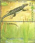 № 529Zf - From The Red Book of the Republic of Moldova: Fauna - Reptiles and Amphibians 2005